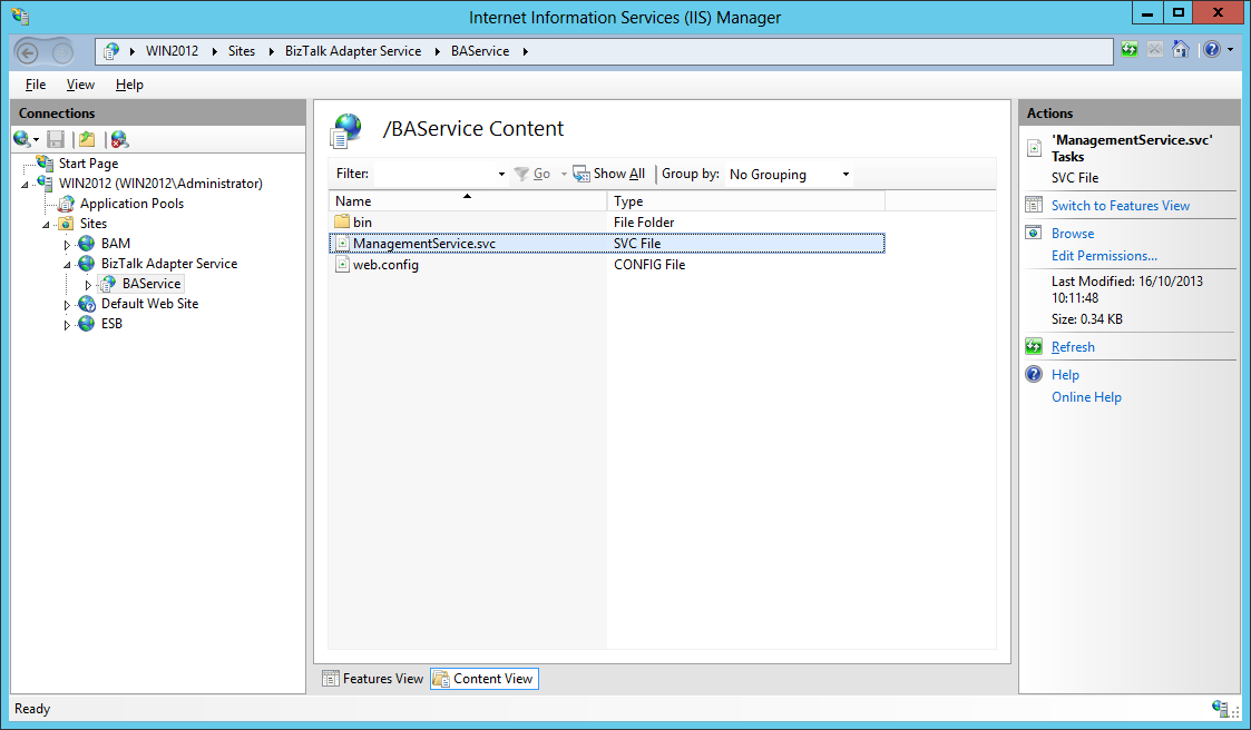 BizTalk Adapter Service IIS Web App