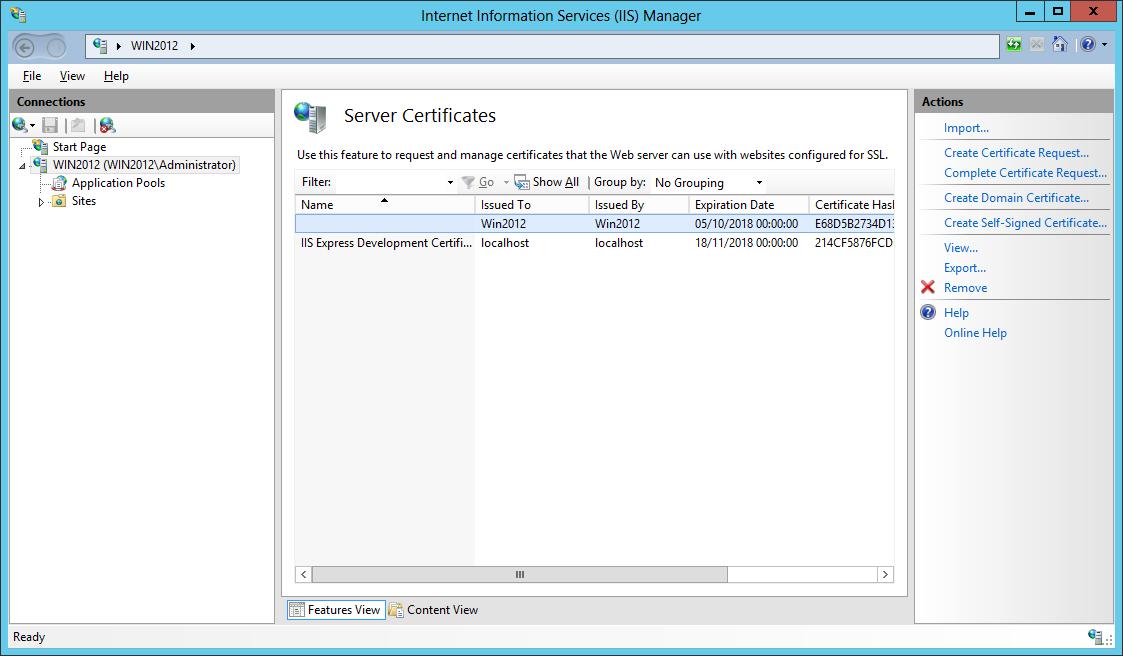 IIS Server Certificate
